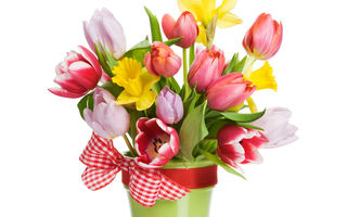 Обои цветы, bouquet, flowers, ленты, ribbon, spring, tulips, букет, лепестки, тюльпаны, весна