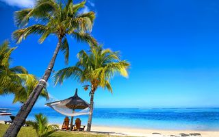 Обои tropical, hammock, paradise, ocean, sunshine, palms, пляж, тропики, пальмы, vacation, beach, берег, песок, sea, summer, море