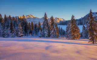 Обои winter, tree, snow, mountain, sunset