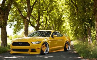 Обои Ford, Stance, Yellow, Front, Wheels, Tuning, 2015, Mustang