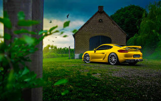 Обои Porsche, Rear, Summer, GT4, Nature, Color, Car, Cayman, Yellow
