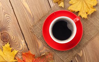 Обои autumn, осенние листья, осень, fall, maple, cup, leaves, чашка, coffee, клён