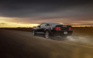 Обои Ford, Car, Aristo, Mustang, Collection, Road, Muscle, Grey, Speed, GT 350, Rear