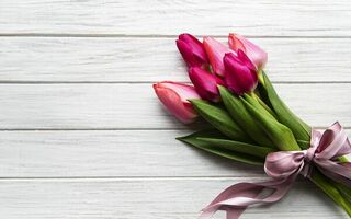 Картинка цветы, tulips, flowers, pink, wood, букет, ribbon, лента, purple, тюльпаны