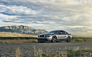 Обои мустанг, 5.0, muscle car, mustang, gt, silvery, ford