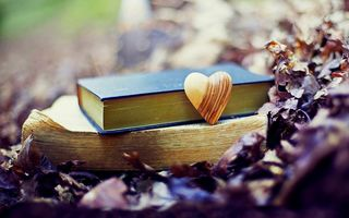 Обои leaves, autumn, fall, природа, park, old, осень, forest, nature, books, love, heart