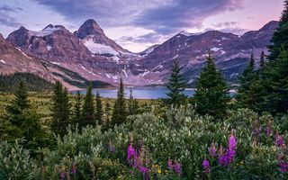 Картинка Mount Assiniboine, Canada, British Columbia, Canadian Rockies, Lake Magog, Mount Assiniboine