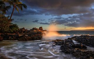 Картинка palm trees, Maui, the ocean, Maui, Makena Cove, Hawaii, coast, Pacific Ocean, The Pacific ocean, sunset, Hawaii