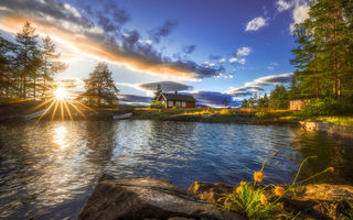 Картинка Ringerike, the lake house, Norway, trees