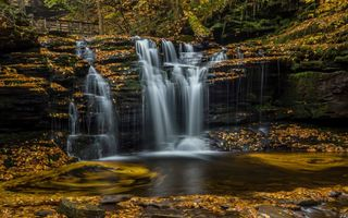 Картинка листья, ricketts glen state park, водопад, каскад, штат пенсильвания, пенсильвания, осень