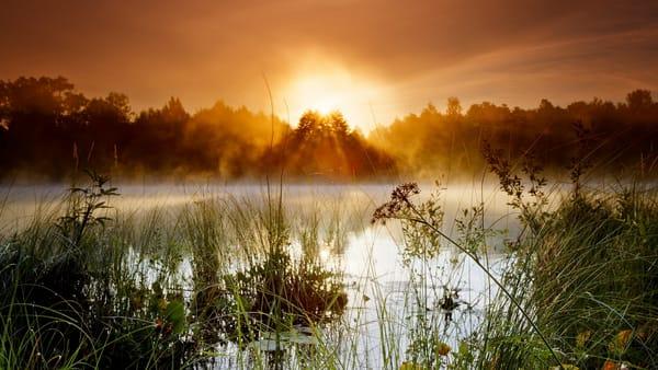 закат на озере туман военной службе