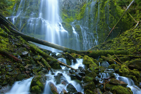 Обои Proxy Falls, камни, Three Sisters Wilderness, Орегон, водопад, Oregon, брёвна, каскад, мох