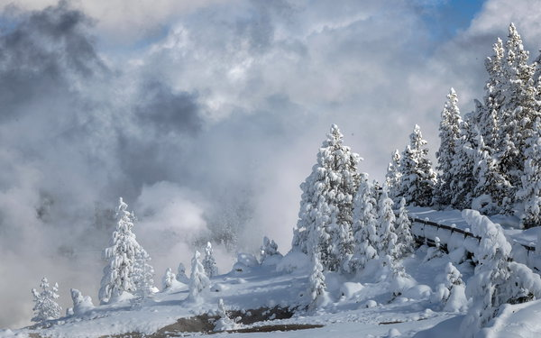 Обои Yellowstone National Park, Winter, Porcelain Basin