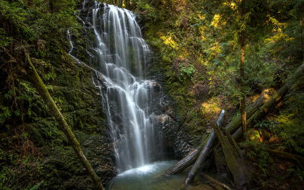 Обои водопад, брёвна, Berry Creek Falls, California