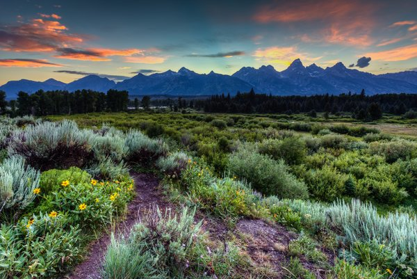 Обои wyoming, grand teton national park, jackson hole