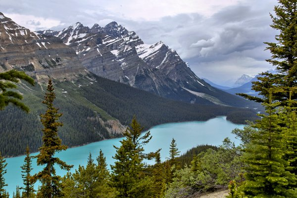 Обои пейзаж, banff national park, река, горы, peyto lake