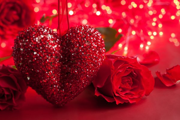 Обои роза, valentines day, сердце, romantic, heart, love, rose