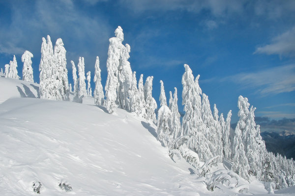 Обои canada, lower mainland, crown of the jewel - mount seymour provincial park, bc