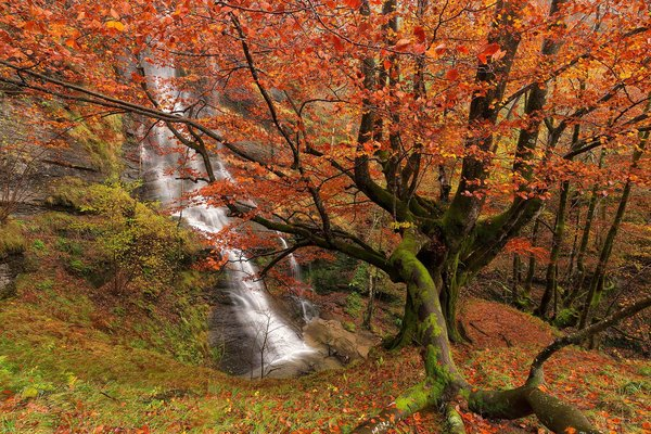 Обои Uguna Waterfall, Basque Country, Bizkaia, Gorbea Natural Park