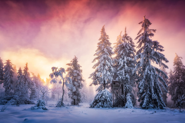 Обои winter, Schwarzwald, Germany, Baden-Wurttemberg, snow