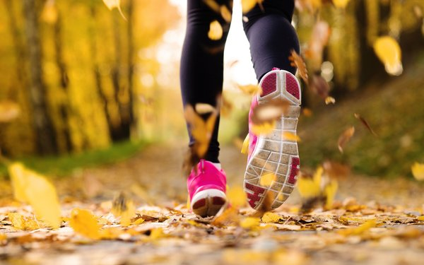 Обои jogging, running shoes, autumn, exercise
