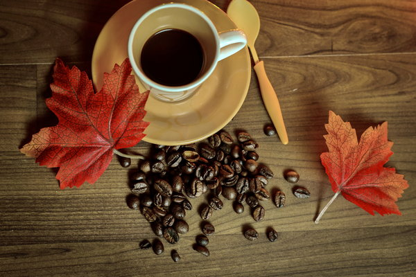 Обои cup, книга, beans, осень, leaves, кофе, coffee, autumn, чашка