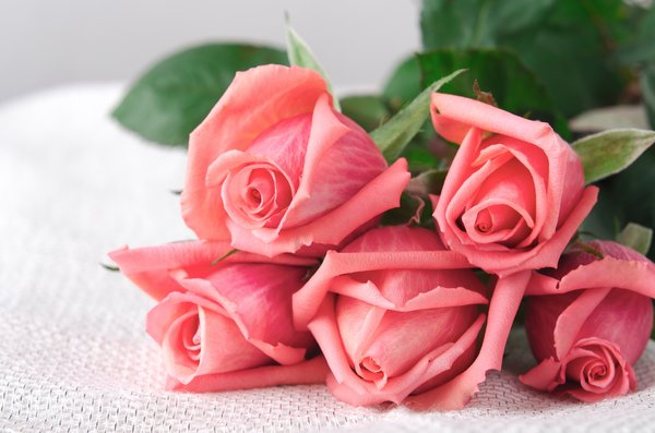 Обои бутоны, roses, букет, розы, flowers, romantic, love, pink