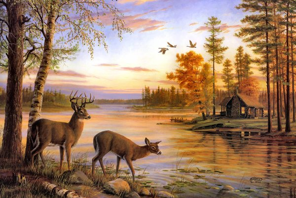Обои birch, nature, Quiet Evening, deer, Mary Pettis, painting, river