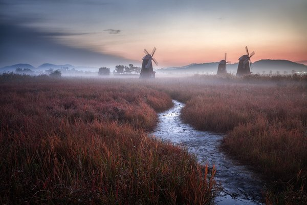 Обои landscape, Holland, sunset, Netherlands, windmills, grass, sky, nature, field, evening, stream, mist, clouds, twilight, fog