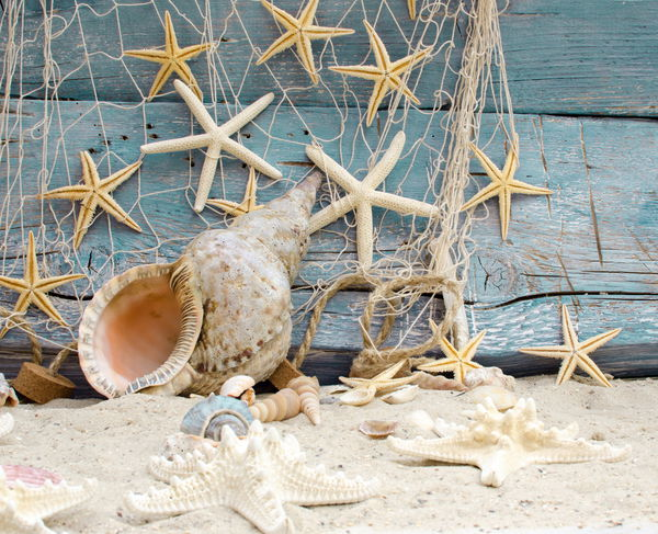 Обои seashells, marine, beach, песок, пляж, starfishes, wood, sand, ракушки, звезды