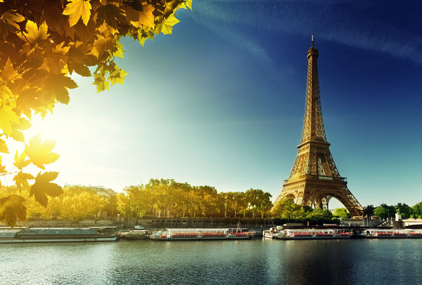 Обои Paris, autumn, Париж, leaves, Eiffel Tower, осень, France