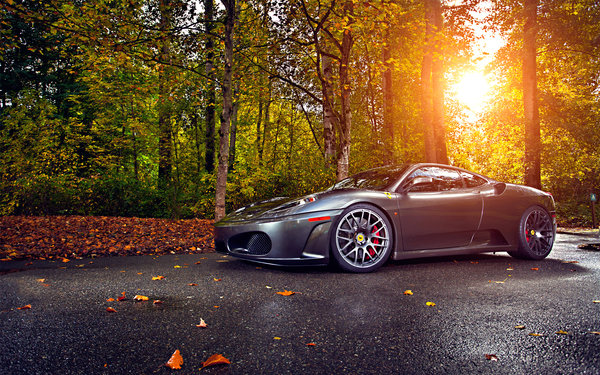Обои Silver, Trees, Wheels, asphalt, Tuning, Ferrari, Leaf, Sun, Autumn, Green, 430