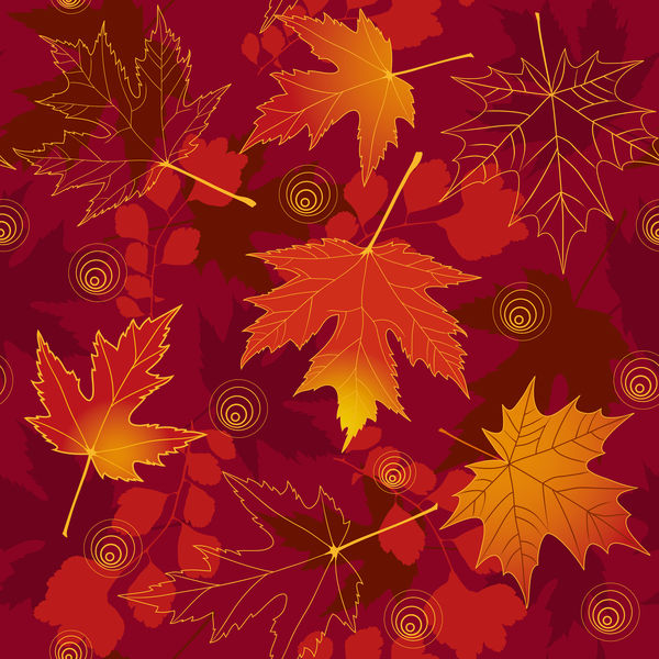 Обои autumn, fall, maple, leaves, осенние, листья