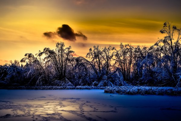 Обои sunlight, landscape, winter, nature