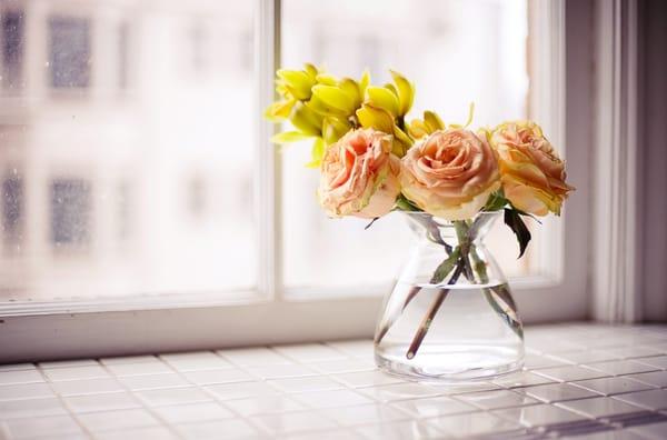 Roses in water vase