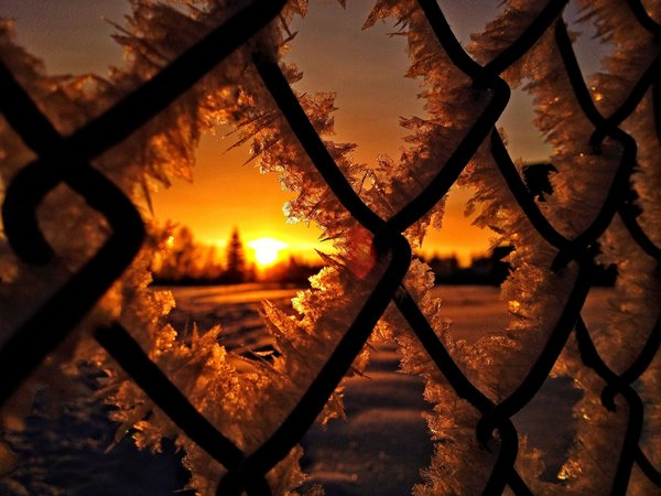 Обои снег, snow, sun, frost, nature, winter, зима, лед, природа, ice, sunrise, sunset